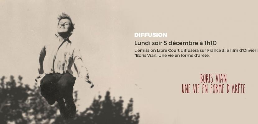 Une vie en forme d'arrête sur France 3 le 5 décembre